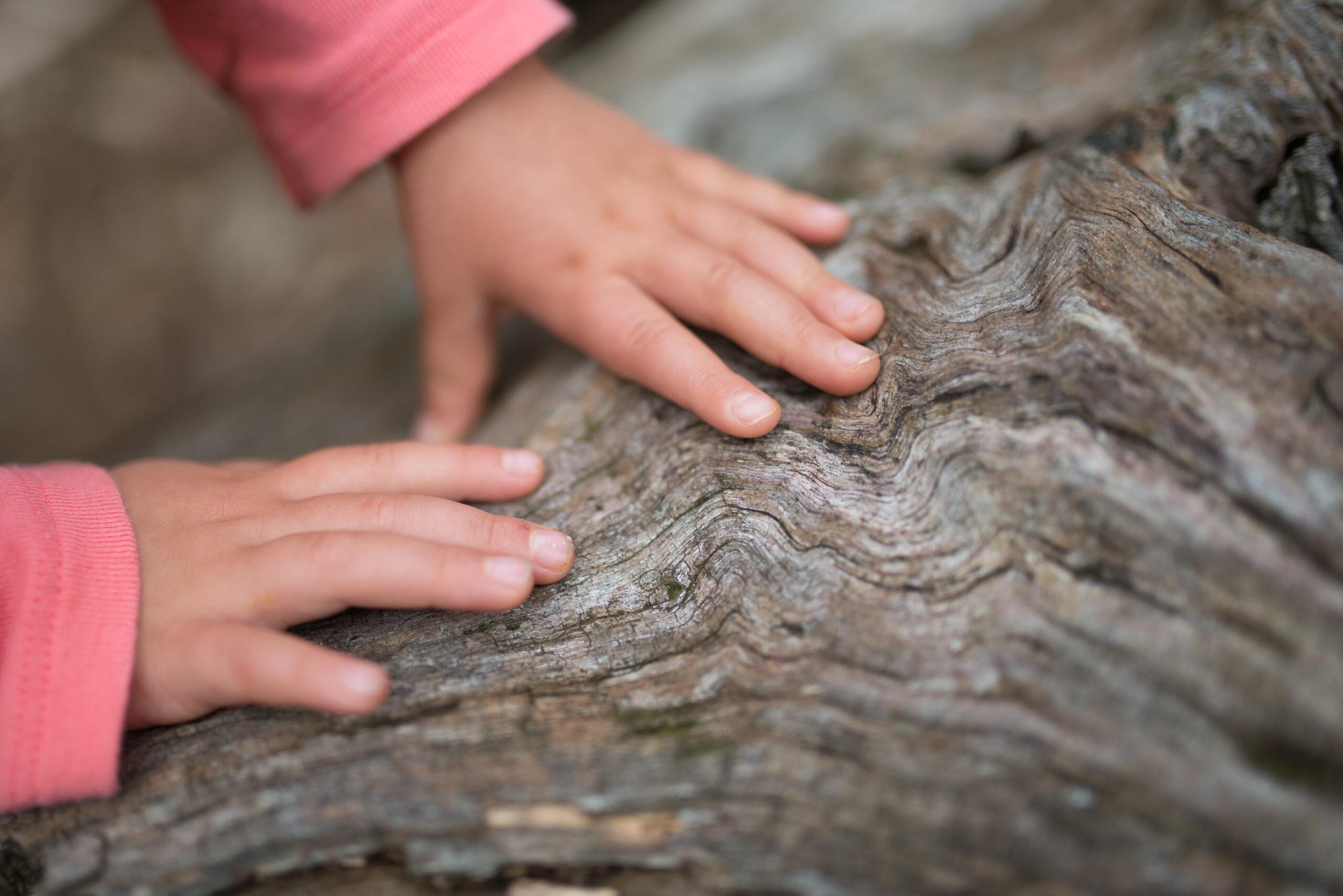 dziecko w lesie